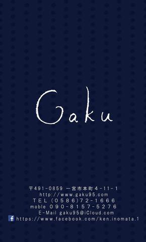 Gaku_CM_1.6w.jpg